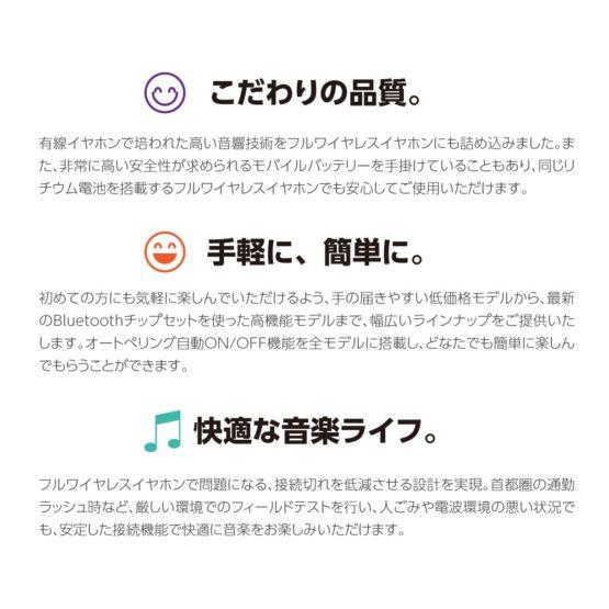 bs31a_8.jpg
